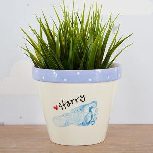 Plant Pots & Vases